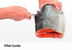Fillet-Guide_Fillet-Guide_250x182